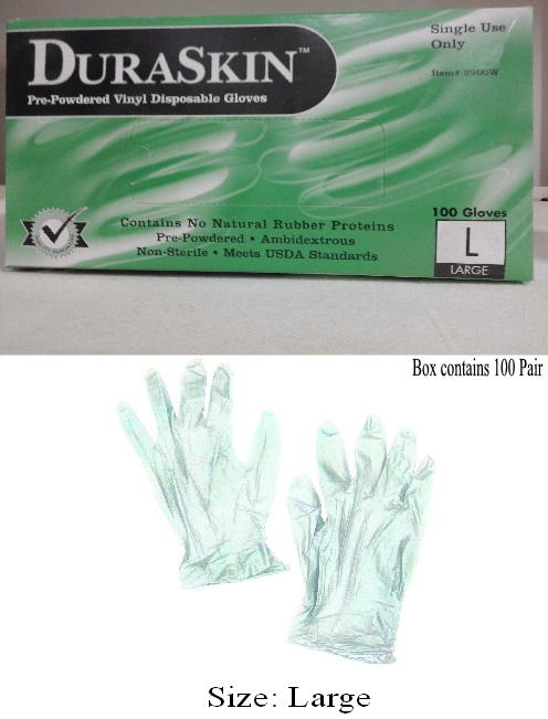 Disposable Latex Gloves (Large)
